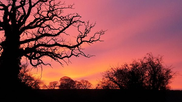 Sunsets and stars at night can be enjoyed at Coxwold