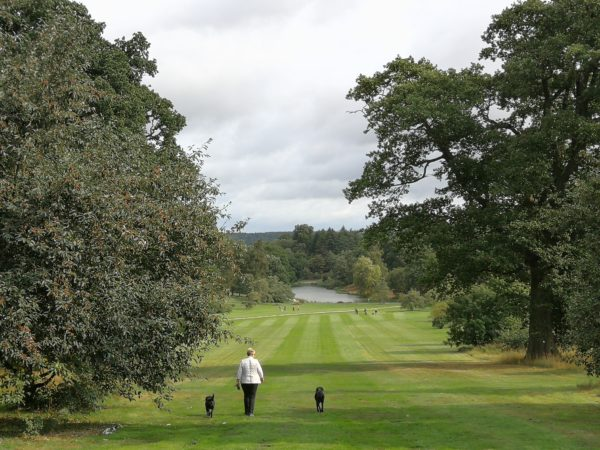 Yorkshire Arboretum near Coxwold Cottages