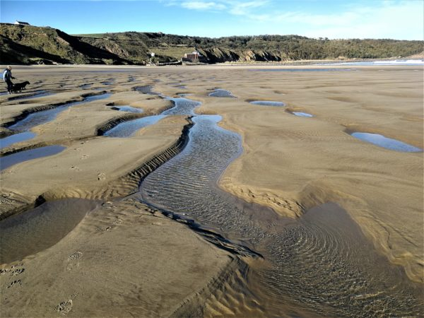 The sands at Cayton Bay near Scarborough - just an hour from Coxwold!