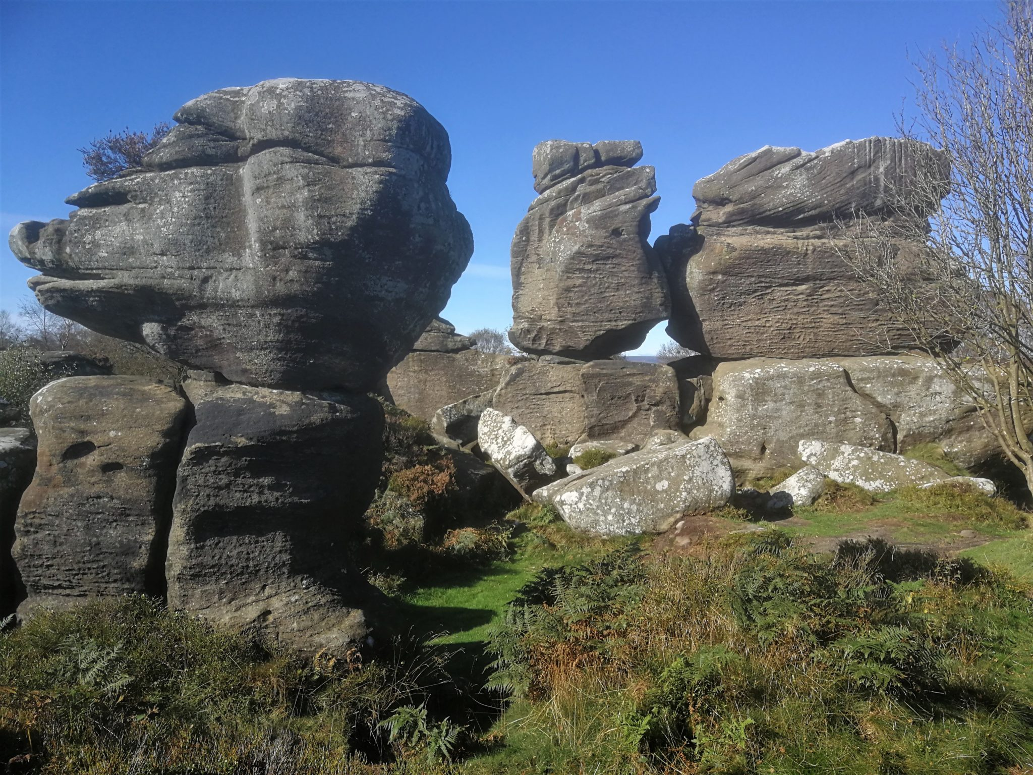 Exploring Brimham Rocks in the Yorkshire sunshine!