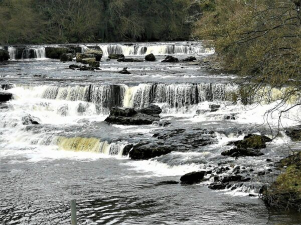 Aysgarth Falls - just an hour from Coxwold Cottages
